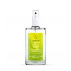Desodorante de Citrus 100 ml