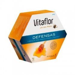 Vitaflor jalea real defensas 20 Viales