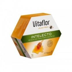 Vitaflor Intelecto 20 Viales